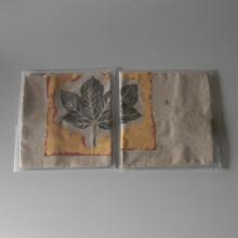 Deux housses de coussin en Lin MIRACLE AU CHATEAU 65 x 65